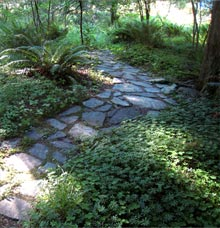 Meandering Path at Westwood Chalet
